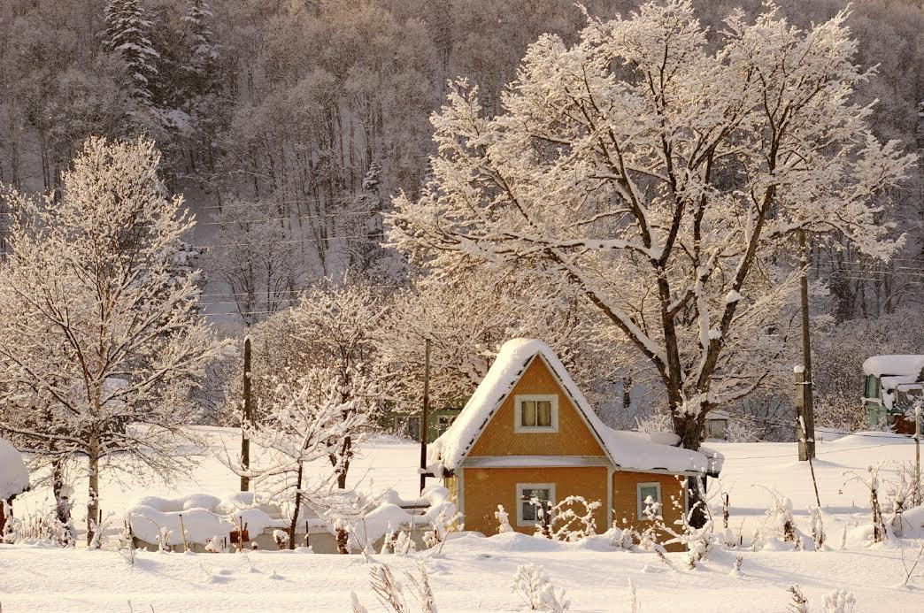 WinterChecklistHouse